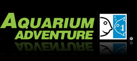 Aquarium Adventure The Widest Selection Of Aquariums